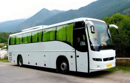 coach-services